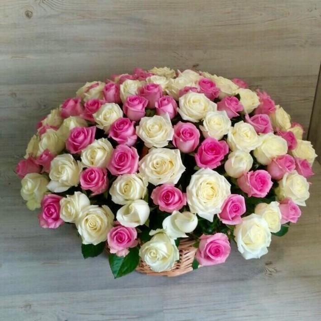 Корзина из 101 бело-розовой розы